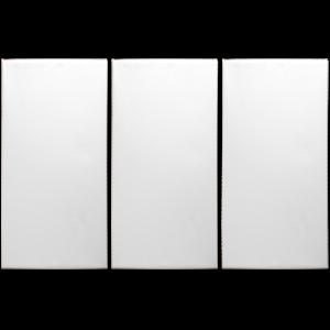 Canvas Wall Art 3 Panel